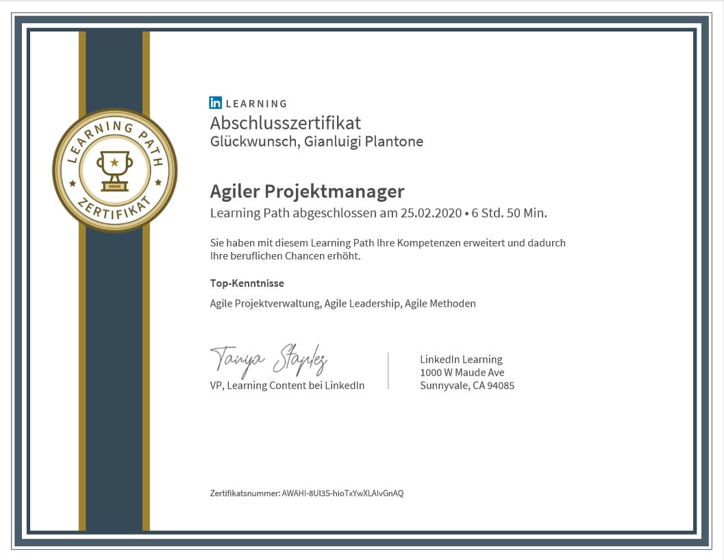 Agiler ProjektmanagerTop-KentnisseAgileProjektverwaltung,AgileLeadership,AgileMethoden